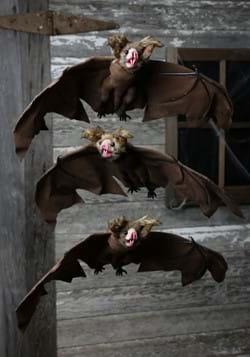 Brown Bat 3 Pack