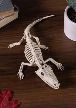 4 Baby Alligator Skeleton Prop