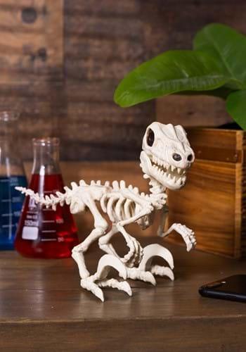 5 5 Raptor Crazy Bonez