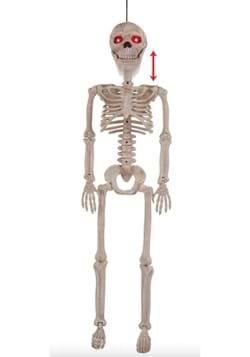 Crazy Bones Junior