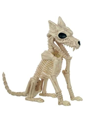 "17.5"" Wolf Skeleton"