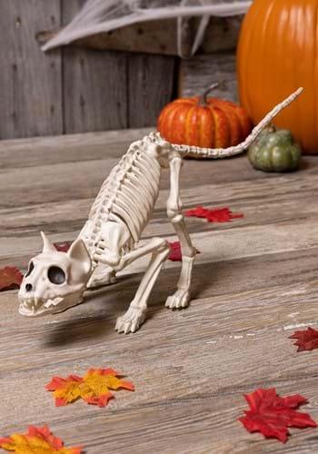 """11"""" Lil' Kitty Skeleton"""