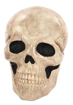 17 25 Giant Skull