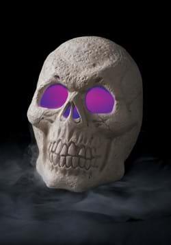Misting Skull Decoration