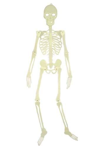 5' Glow in the Dark Skeleton