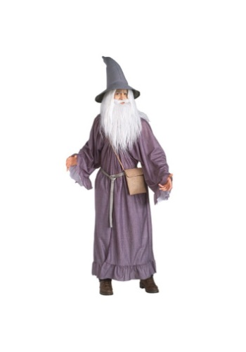 Click Here to buy Adult Gandalf Costume from HalloweenCostumes, USA Funds & Shipping