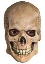 Skull Mask - $24.99