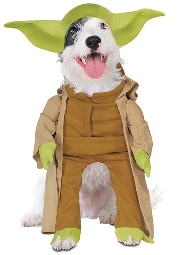 Yoda Dog Costume By: Rubies Costume Co. Inc for the 2015 Costume season.