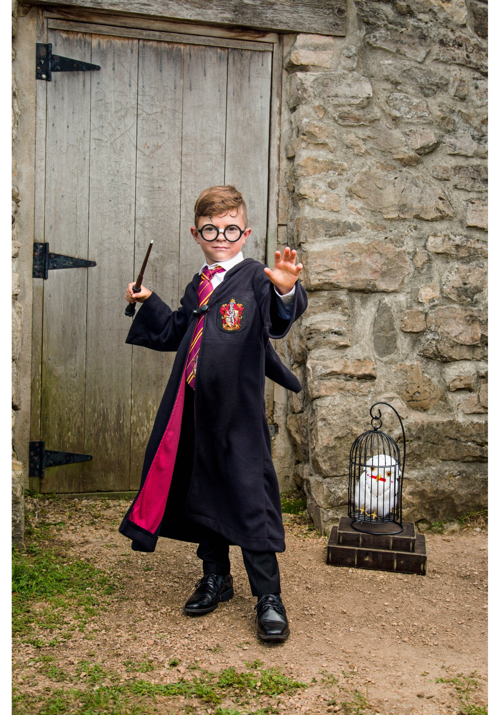 Harry potter sexy costume