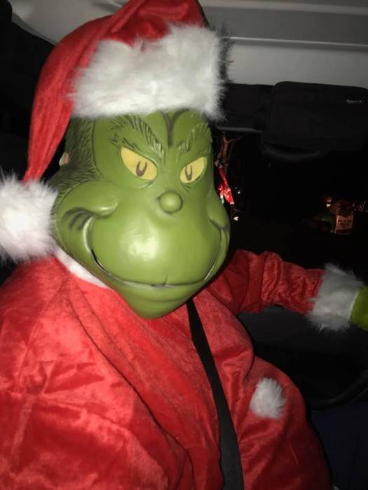 Plus Size Grinch Costume 2x